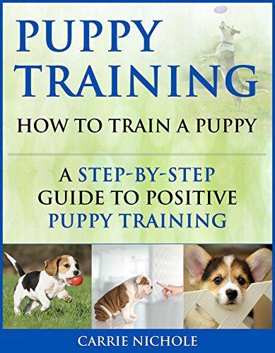 Reward Based Dog Training – Teaching Your Puppy to Sit