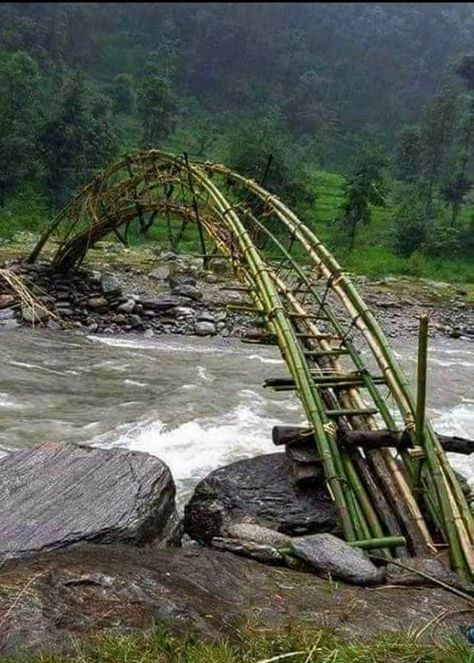 sıtkı All Nature / Bamboo bridge Would love to cross this someday Old Bridges, Bamboo Structure, Bamboo Architecture, Bridge Design, Pedestrian Bridge, Covered Bridges, Beautiful Landscapes, Paths, Beautiful Places