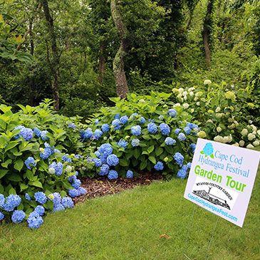 July 2016 Hyannis Country Garden Country Gardening Garden Tours Garden