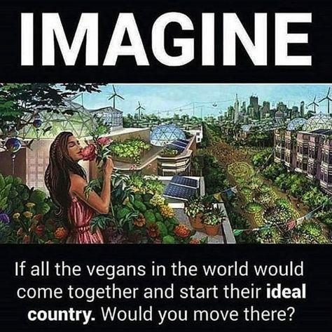 Would you move there? 🤔🌱 . . 📸: #repost @thevegan.road_  #vegannation #veganworld #livingengine