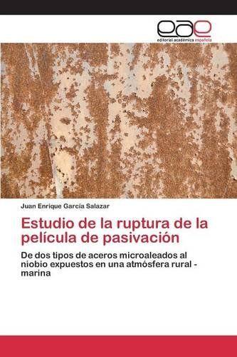 Estudio de la ruptura de la película de pasivación (Spanish Edition) by García Salazar Juan Enrique http://www.amazon.com/dp/3659062340/ref=cm_sw_r_pi_dp_L6ALvb0JN9FDH