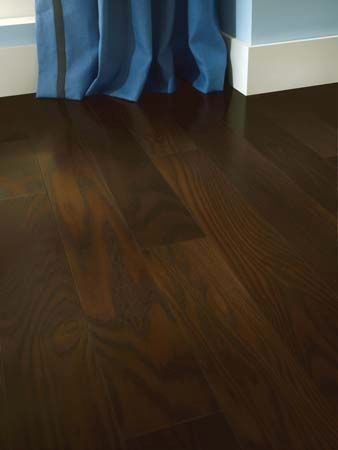 Types Of Hardwood Flooring That Are Best For Dogs And Advice On