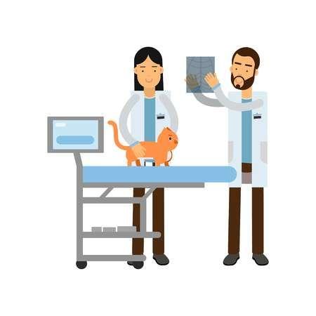 Dos Medicos Veterinarios Que Examinan El Gato Rojo En El Vector De Dibujos Animados De Clinica Veterinaria Ilustracion Veterinaria Dibujo Gato Rojo Veterinaria