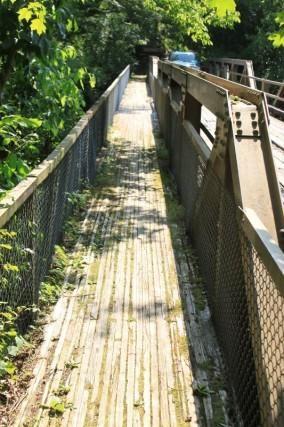 Bankhead Nation Forest Sipsey River Trailhead Bridge