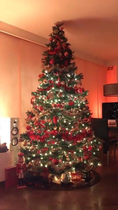Christmas Tree LED String Lights  Input: 120V US Plug,220V EU Plug,230V UK Plug,240V AU Plug  Size: 160cm  Lamplight mode: Stable light/twinkling with changeable colours  Lamplight source type: LED  Quantity of LED beads: 64 LED RGB balls  Package includes: 1 * String Light, 1 * Instruction manual