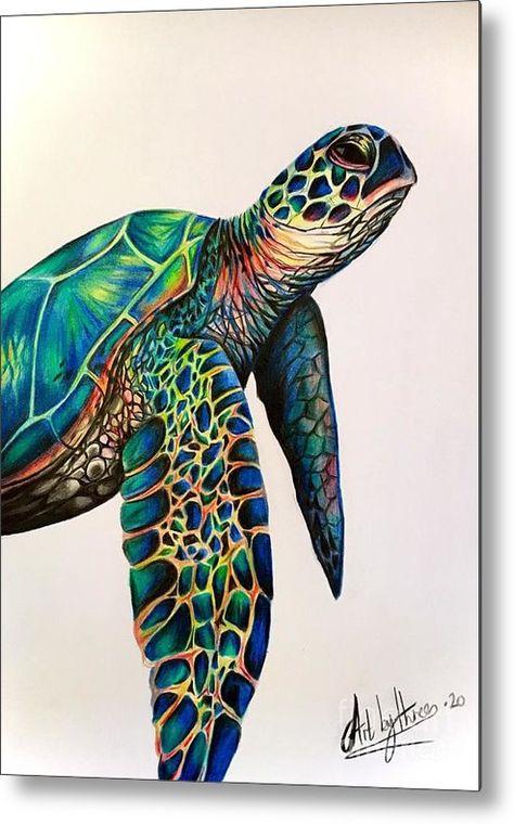 Sea Turtle Painting, Sea Turtle Art, Sea Turtle Drawings, Sea Turtle Tattoos, Mandala Turtle, Animal Drawings, Art Drawings, Colorful Drawings, Colorful Animal Paintings