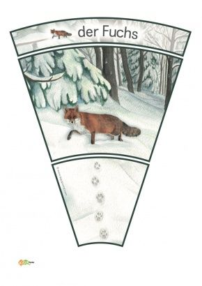 7 Kindergarten Kigaportal Winter Spuren Schnee Waldtiere Reh Dachs Fuchs Eichhoernchen Schneehase Kind Tierspuren Im Schnee Tierspuren Projekte Im Kindergarten