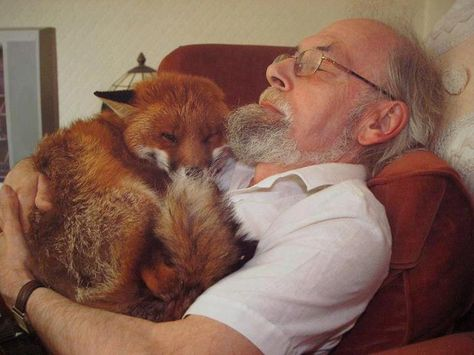 Six years ago, Cropper was found in the street after a fight with dogs. Seriously injured and ill (toxoplasmosis), Cropper was nursed back to health by this man's patience, love and determination. Not strong enough to return to the wild, Cropper spends very happy days with his human friend.