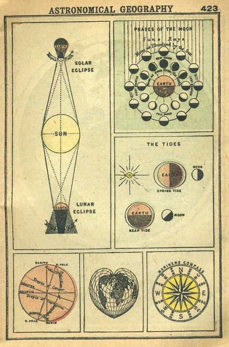 1902 Astronomical Geography Chart of Lunar and Solar Eclipses, Moon Phases, Tides etc Ravenclaw, Arte Peculiar, Solar Eclipse, Moon Phases, Book Of Shadows, Stars And Moon, Sun Moon, Sacred Geometry, Science Nature