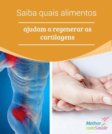 Cuidar Das Cartilagens Quais Alimentos Podem Ajudar Cartilagem