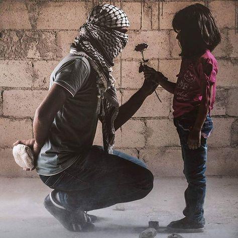 . ازرَعيها على قَبري .. وسأزرع الرُّعب في قُلوبِهم  تصوير: أنس شُرّاب  #فلسطين #فلسطين_تنتفض