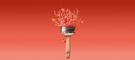 Trendfarbe Coral Schoner Wohnen Farbe For The Home