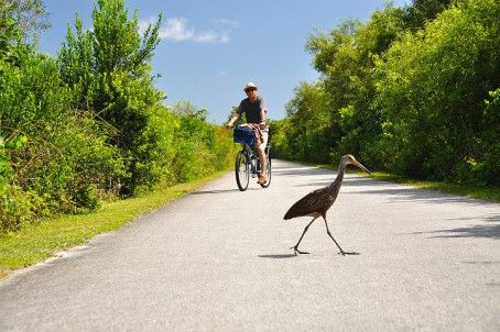 Scenic Bike Rides In The U S Where To Bike In All 50 States