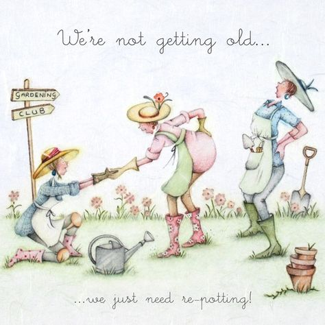 Cards » We're Not Getting Old » We're Not Getting Old - Berni Parker Designs