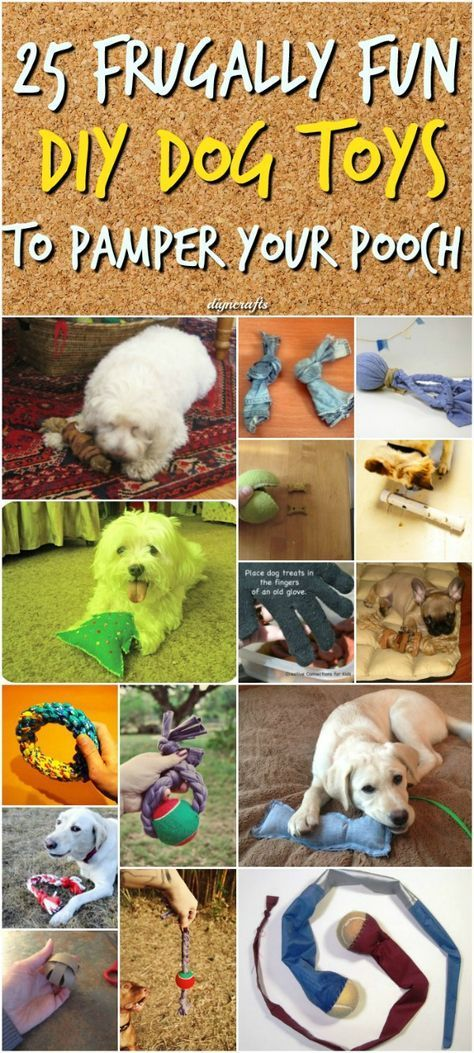 25 Frugally Fun Diy Dog Toys To Pamper Your Pooch Diy Dog Toys