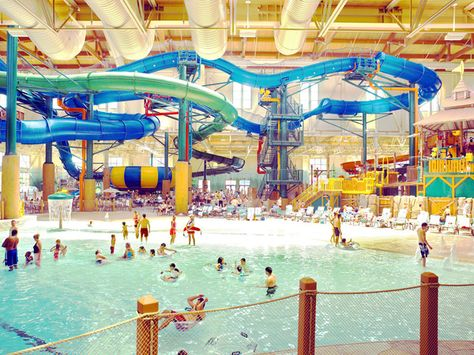 New Indoor pool in Colorado Springs. the great wolf lodge – pool ideas