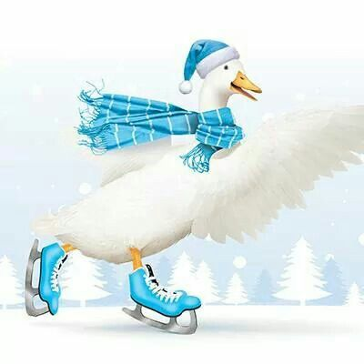 Aflac Duck Ice Skating  Aflac Duck