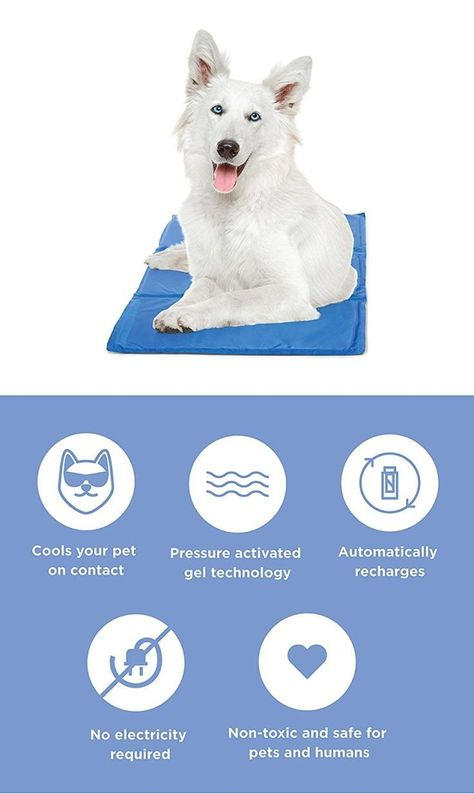 Dog Cooling Mat Product Review Dog Cooling Mat Pets Your Dog
