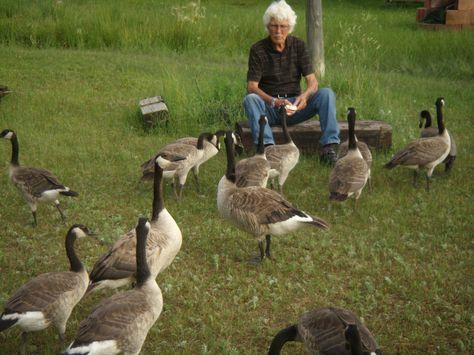 10 Springtime Activities for Seniors | The Intentional Caregiver