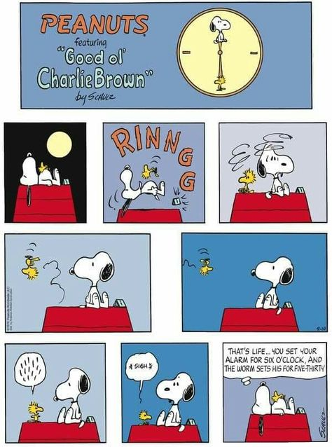 Baseball Team Manager Classic 1964 Peanuts Cartoon Figure CHARLIE BROWN