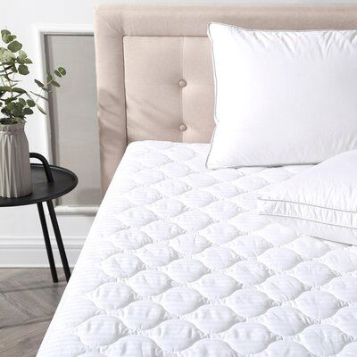 Alwyn Home Deluxe Defend A Bed Polyester Mattress Pad Bed Size Queen Mattress Pad Mattress Mattress Protector
