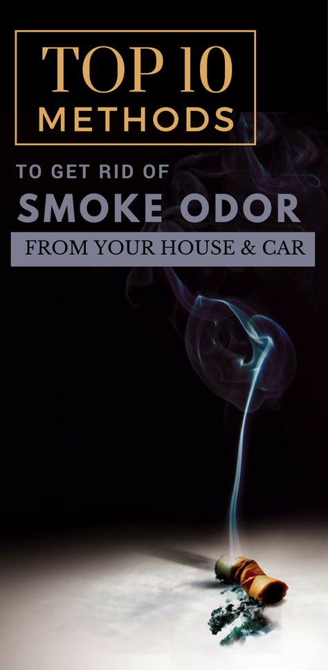 Top 10 Methods To Get Rid Of Smoke Odor From Your Home Car