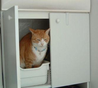 猫 グッズ トイレ 猫トイレの置き場所について ネコジルシ 猫 トイレ 猫 トイレ