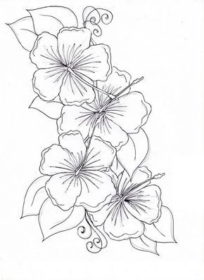 Hibiscus Flower Hibiscus Flower Drawing Coloring Page Flower