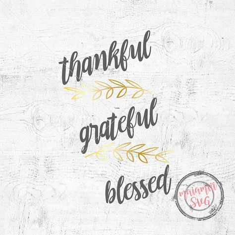 Blessed Svg Thanksgiving Svg Thankful And Blessed Family