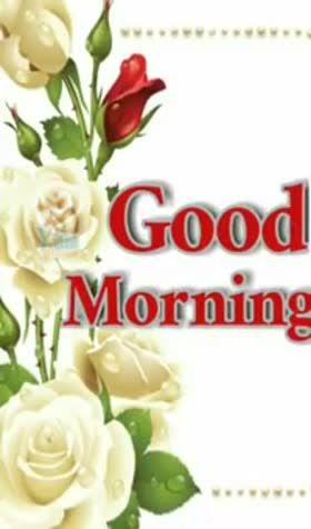 Good Morning Status For Whatsapp Good Morning Gif Good Morning