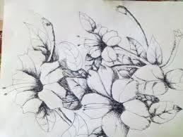 Lukisan Kanvas Bunga Kamboja Google Penelusuran Menggambar Bunga Sketsa Bunga