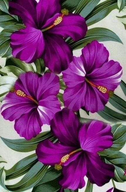 Purple flowers varieties and types - Painting Subjects