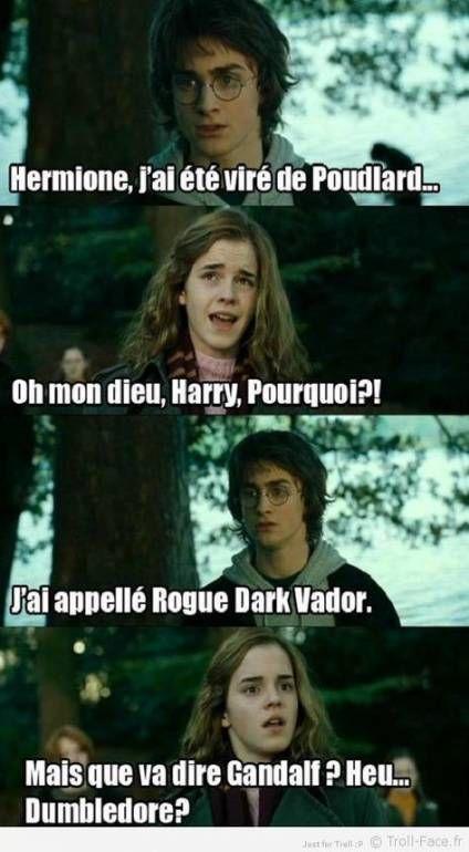 Best Memes Disney Francais 15 Ideas Harry Potter Memes Hilarious Harry Potter Funny Harry Potter Hermione