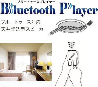 アバニアクト Bluetooth対応天井埋込型スピーカー アンプ一体型 Abp