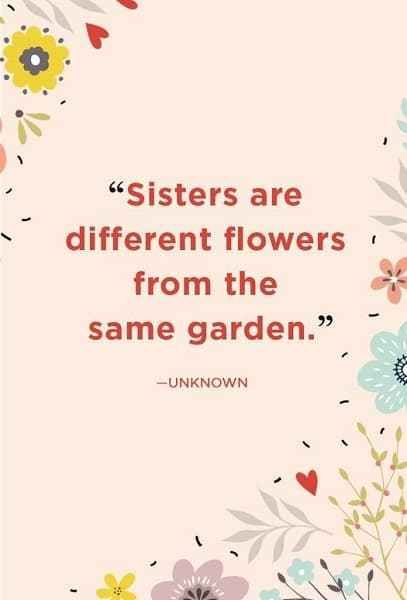 212 Exclusive Cute Funny Sister Quotes To Text Sister Quotes