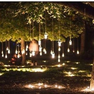The Wedding Entertainment You Choose Helps To Develop And Keep The Air Of Celebration Turning The Wedding Tree Decorations Diy Outdoor Weddings Wedding Lights