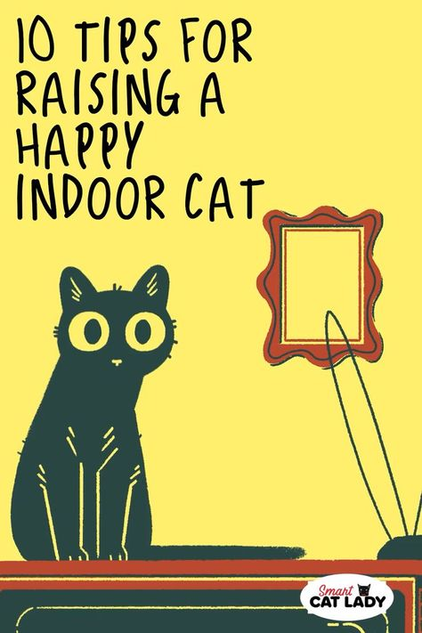Hey cat lovers, here's som cat care tips on how to raise a happy indoor cat. #SmartCatLady #cats #catcare
