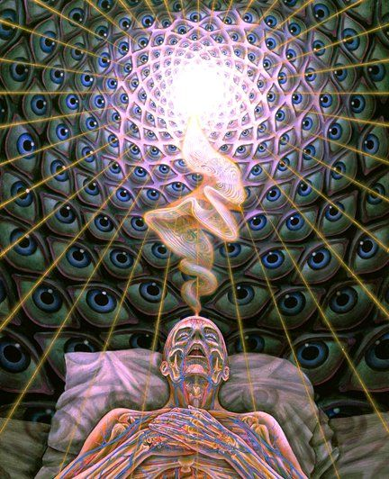 The Me Inside The Meat Suit Advice Confessions Alex Grey