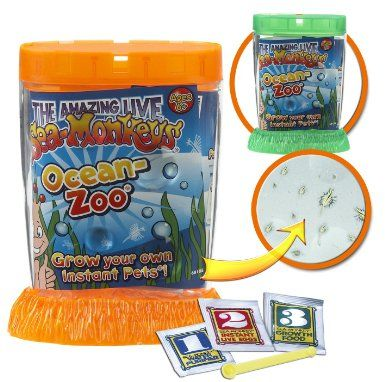 Amazon Com Schylling Sea Monkeys Ocean Zoo Colors May Vary