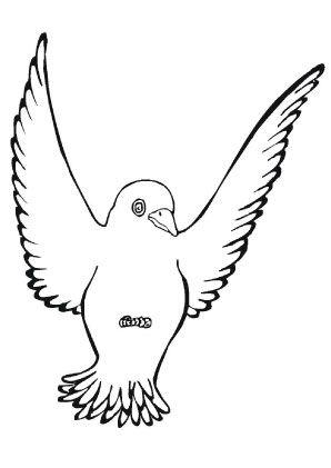 Ausmalbild Amsel Zum Ausmalen Ausmalbilder Ausmalbildervogel Malvorlagen Ausmalen Schule Ki Vogel Malvorlagen Ausmalbilder Vogel Ausmalbilder