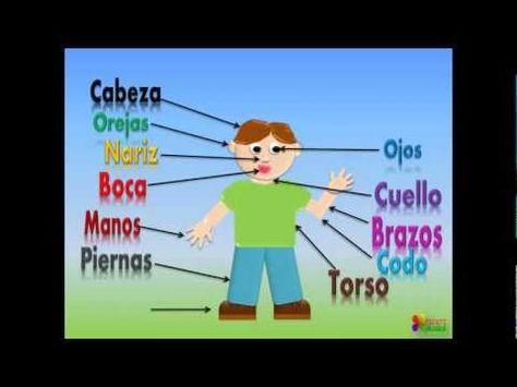Las Partes Del Cuerpo Para Niños, Our Body Parts In Spanish For Children (Video Infantil)