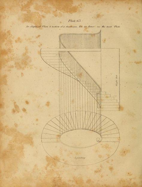 The Carpenter S New Guide 1901 An Elliptical Staircase Staircase Drawing Stairway Design Staircase Design