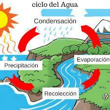 Ciclo Del Agua Para Niños Buscar Con Google Ciclo Del Agua Ciclo Hidrologico Unidades Temáticas