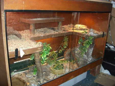 Stacked Vivariums For Sale Google Search Reptile Tank Bearded