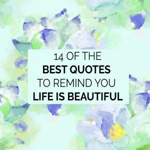 14 Of The Best Quotes To Remind You Life Is Beautiful Life Lifequotes Lifeisbeautiful Beauty Life Is Beautiful Quotes Best Quotes Life Quotes To Live By
