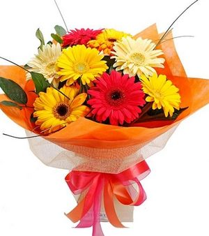 Pin By Krishna Flowers On Send Flowers To Mumbai Online Flower Delivery Flower Delivery Fresh Flower Delivery