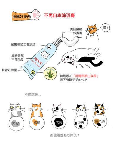 貓小姐的光陰筆記 Cat Drawing Photo Slider Animals And Pets