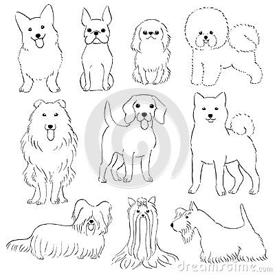 Group Of Small Dogs Hand Drawn Line Art By Pen With Images