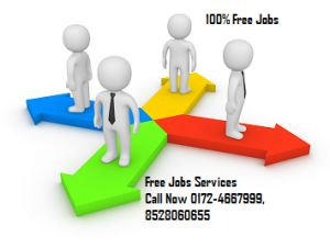 Best Free Jobs Images On   Chandigarh Jaipur And Job