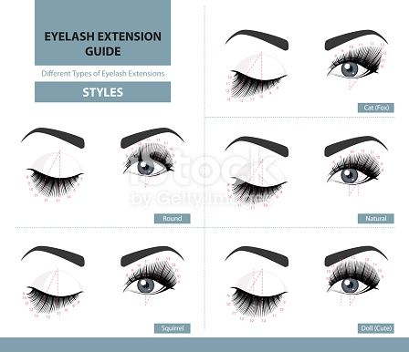 Download This Different Types Of Eyelash Extensions Styles For The Most Flattering Look Infographic Vector Illustration Template Extension Cils Cils Cils Image